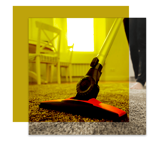 Professional Carpet Cleaning Curtin