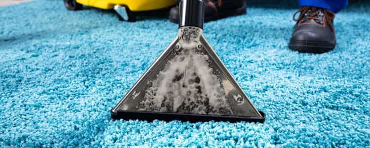 Expert Rug Cleaning Curtin